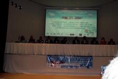 iii_congreso_106_20111118_1758345437